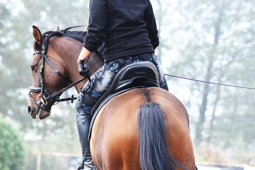 Siodło do jazdy konnej